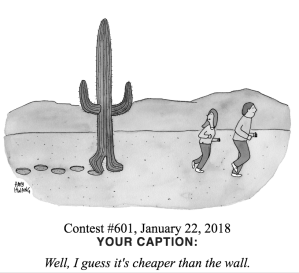new yorker caption